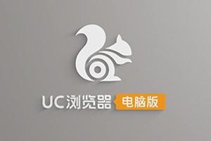 UC浏览器最新版 v5.6.13381.9