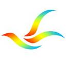 龙飞签名设计软件中文绿色免费版 v13 3.0