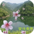 粤语歌经典100首-雪峰音乐自然播放器苹果版v9.3.1