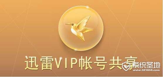 迅雷vip账号共享5月10日更新