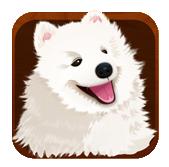 宠物主义安卓版 v1.3