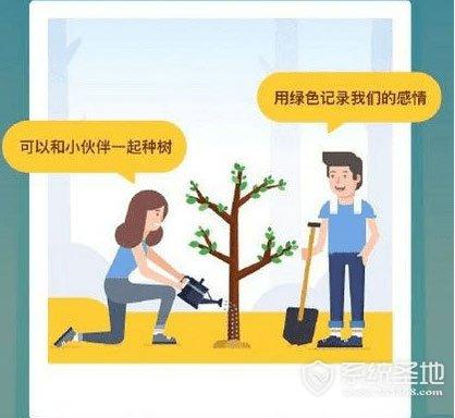 支付宝怎么合种树?