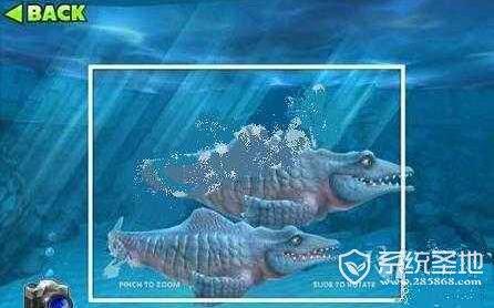 饥饿的鲨鱼进化沧龙怎么解锁?
