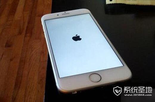 iphone一直白苹果怎么办?