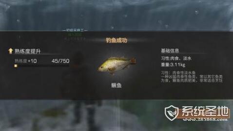 明日之后钓鱼高手怎么得?要挂机多久?